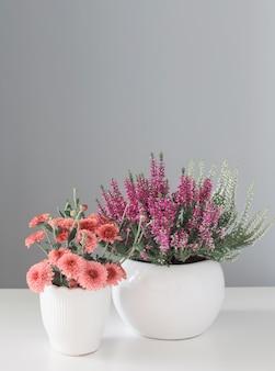 Jesienne kwiaty na szarym tle