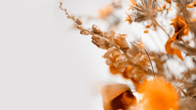 Jesienne kwiaty z copyspace