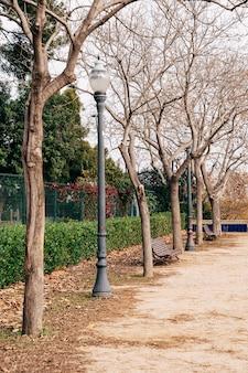 Jesienne latarnie parkowe drzewa bez liści i czerwone liście w ponurym parku
