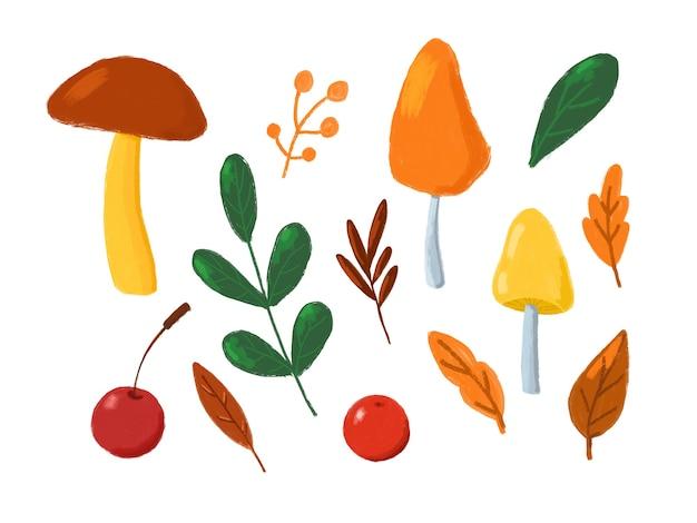 Jesienne liście i grzyby kolekcja clipart ręcznie rysowane ilustracje jesienne na białym tle