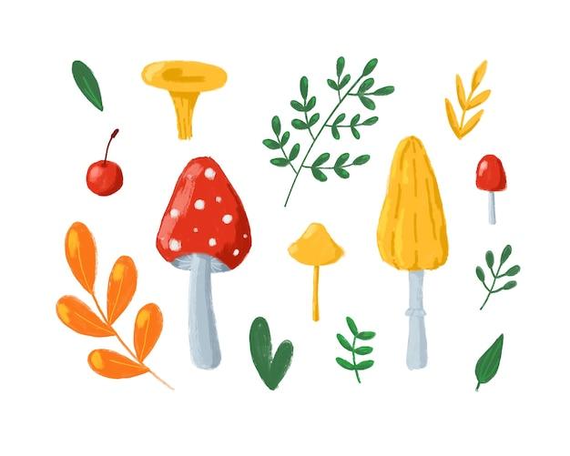Jesienne liście i grzyby kolekcja clipartów jesień zestaw clipartów na białym tle