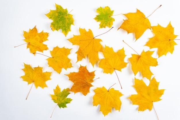 Jesienne liście klonu na drewnianym stole opadające liście naturalne tło