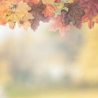 Jesienne liście klonu zaprojektowane jako ramka górna