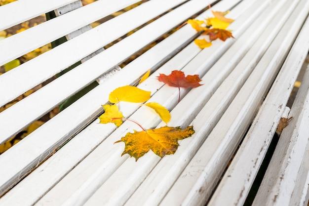 Jesienne liście na białej drewnianej ławce