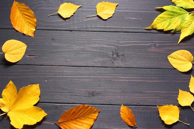 Jesienne liście na czarnym tle kopia przestrzeń