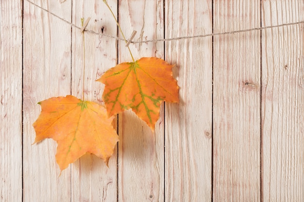 Jesienne liście na drewnianej ścianie