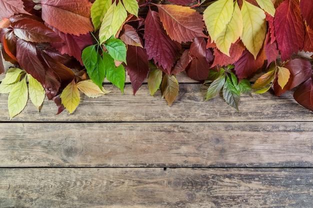 Jesienne liście na drewnianych deskach