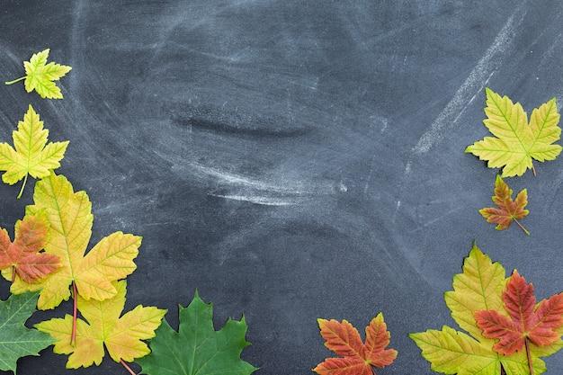 Jesienne liście na tle tablicy nauczycielskiej