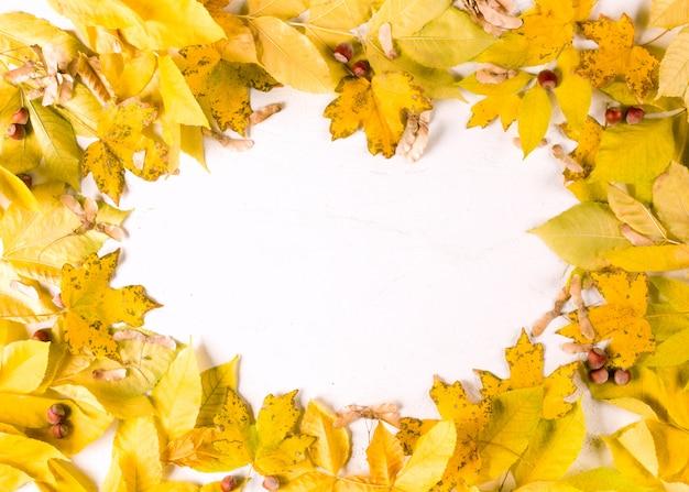 Jesienne liście owalne obramowanie ramki