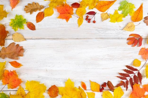 Jesienne liście są czerwone i żółte na starym białym drewnianym tle. pojęcie wakacji, studiów.