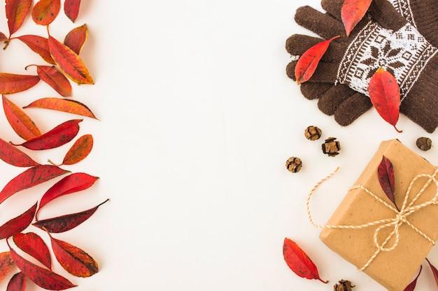 Jesienne liście w pobliżu rękawiczki i teraźniejszości