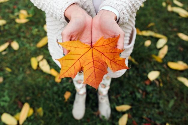 Jesienne liście w ręce kobiety