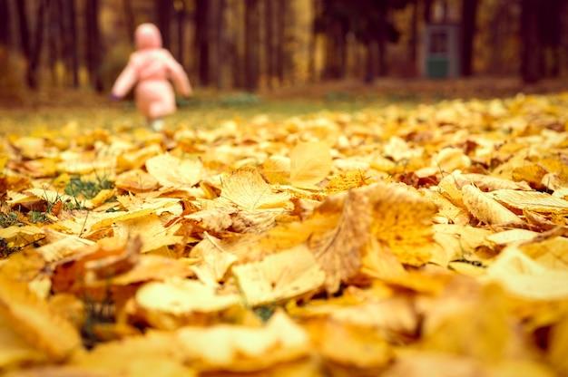 Jesienne liście wiązu na ziemi z bliska i na tle rozmazanej biegnącej chodzącej dziewczynki w jesiennym parku