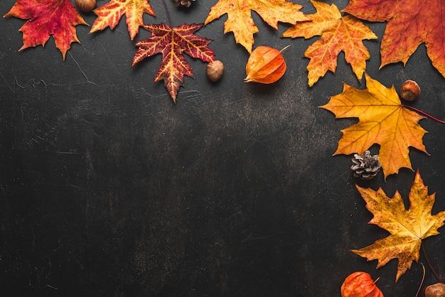 Jesienne liście z orzechami na czarnym tle