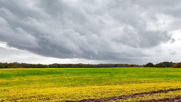 Jesienne pole. droga w polu jesienią. dramatyczne niebo i drzewa pomarańczowe.
