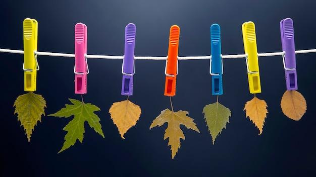 Jesienne suche liście wiszą na kolorowych spinaczach do bielizny
