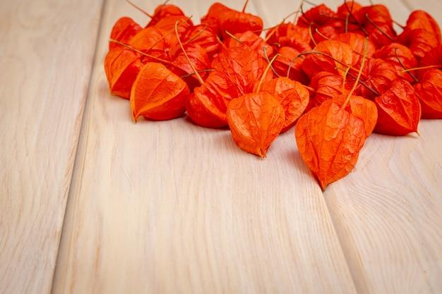 Jesienne tło. jasne pomarańczowe jagody pęcherzycy na jasnym tle drzewiastym.
