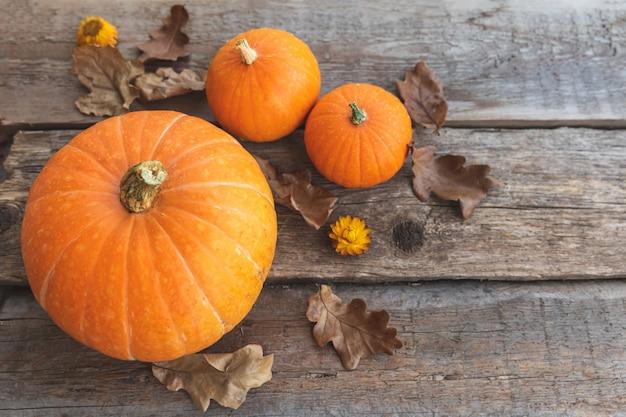 Jesienne tło naturalna jesień widok dynie na drewnianym tle inspirujący październik lub ...