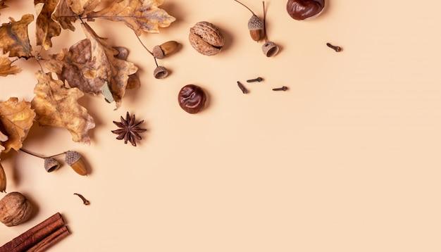 Jesienne tło, płaskie świeckich. suche liście dębu, żołędzie i kasztany