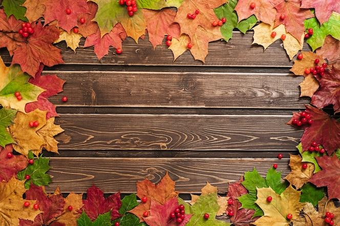 Jesienne tło z kolorowymi liśćmi na drewnianej desce