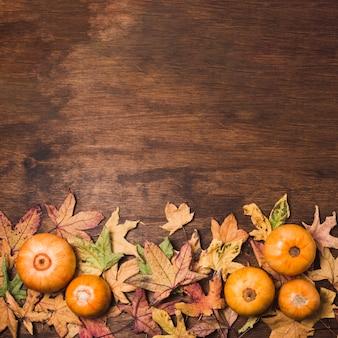 Jesienne warzywa i liście przestrzeni kopii
