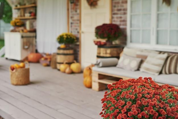 Jesienne zbiory tarasowe tło. halloween. kraj. dynie i kwiaty. dom wakacyjny. święto dziękczynienia