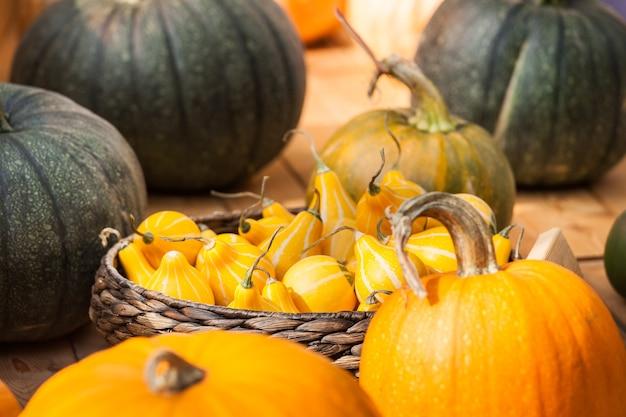 Jesienne zbiory tła, duże pomarańczowe i zielone dynie