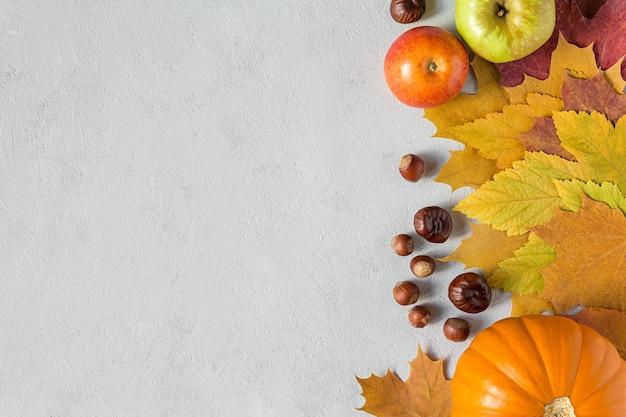 Jesienne zdjęcie z jesiennymi zbiorami dyniowych jabłek na betonowym szarym tle płaskie leżał z kopią przestrzeni