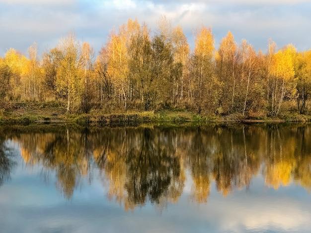 Jesienne żółte liście drzew odbijają się w wodzie jeziora