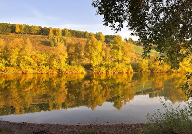 Jesienny brzeg rzeki inya. drzewa ze złotymi liśćmi na wysokim zboczu odbijają się w wodzie