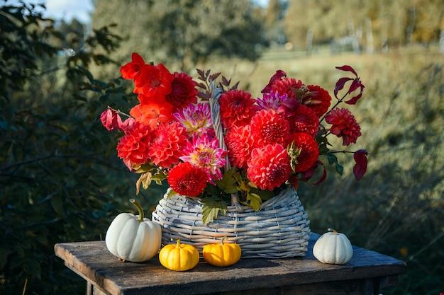 Jesienny bukiet czerwonych dalii