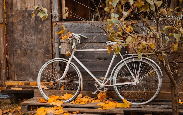 Jesienny czas. vintage rower z kolorowymi kwiatami w koszu opierając się na drewnianej ścianie starego atmosferycznego wiejskiego domu w sezonie jesiennym, strunowa torba z jesiennymi zbiorami wisząca na drzwiach