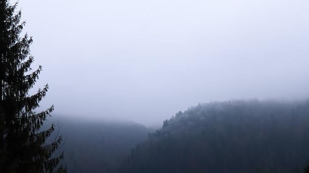 Jesienny deszcz i mgła na górskich wzgórzach. mglisty jesienny las pokryty niskimi chmurami.