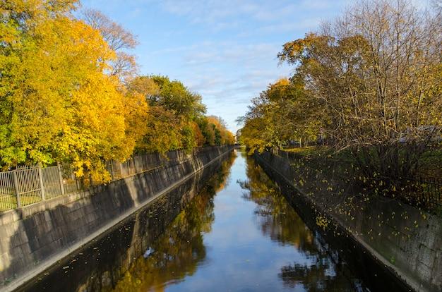 Jesienny dzień drzewa z żółtymi liśćmi wzdłuż kanału miejskiego