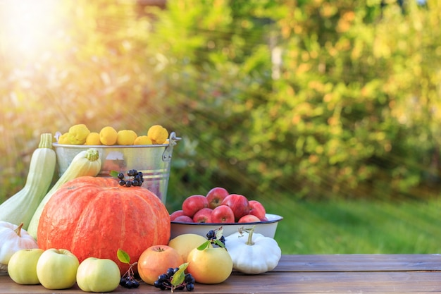 Jesienny dzień dziękczynienia w tle piękno wakacje jesienny festiwal koncepcja scena jesienna