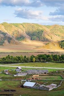 Jesienny górski krajobraz z hodowlą zwierząt gospodarskich rosja góra ałtaj