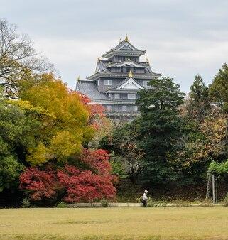 Jesienny kolor klonu z ogrodu korakuen i zamku okayama w okayama w japonii