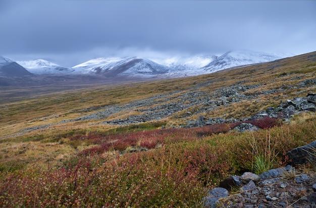 Jesienny krajobraz altay. zachód słońca na stepie, wieczorne niebo z chmurami, platon ukok