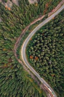 Jesienny krajobraz, droga utwardzona w górskim lesie. malowniczy kontrast tworzą żółte i czerwone odlane drzewa oraz zielone drzewa iglaste.