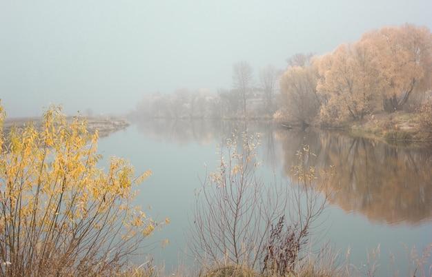 Jesienny krajobraz - mgliste jezioro, drzewa i suche opadłe pomarańczowe jesienne liście. gotycki krajobraz jesień, jesienna aleja w mglisty jesienny dzień
