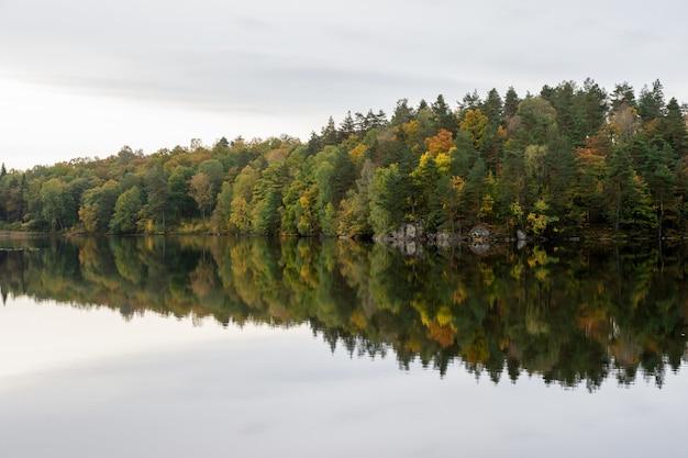 Jesienny krajobraz nad jeziorem, drzewa w jesiennych barwach.