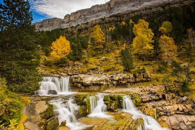 Jesienny krajobraz pięknego lasu i wodospadu