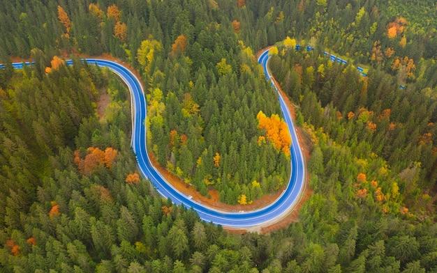 Jesienny krajobraz utwardzona droga w górskim lesie