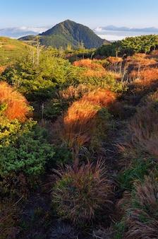 Jesienny krajobraz w górach. wiatr szeleści suchą trawą