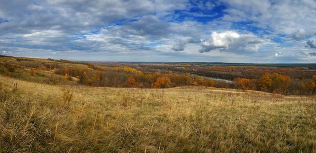 Jesienny krajobraz. widok na las z żółtymi liśćmi zachmurzonego nieba.