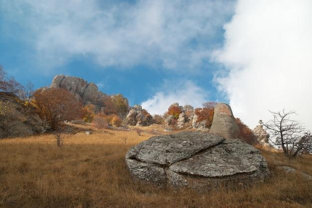 Jesienny krajobraz z chmurami i żółtą trawą.