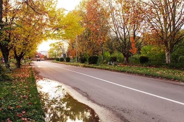 Jesienny krajobraz z drogą i żółtymi i czerwonymi liśćmi