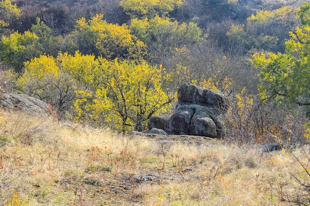 Jesienny krajobraz z drzewami, skałami i wzgórzami