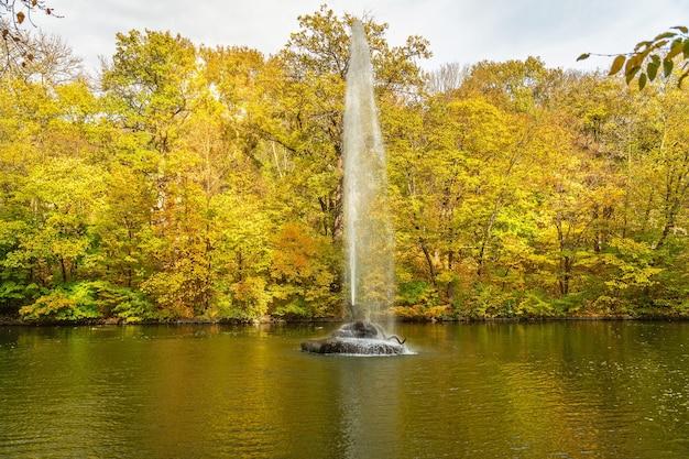 Jesienny krajobraz z fontanną i żółtymi drzewami