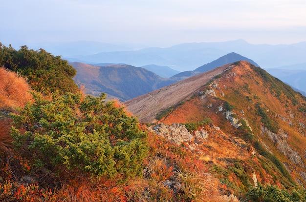 Jesienny krajobraz z górskimi grzbietami i szczytami. pochmurny poranek. karpaty, ukraina, europa